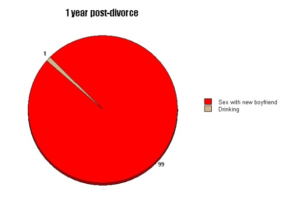 humorous divorce blog